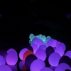 「下鴨神社 糺の森の光の祭 Art by teamLab」とてもよかったです!