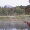 また、池が燃えている!
