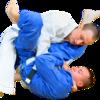 ブラジリアン柔術に効く『孫子の兵法』