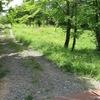 古墳を縫う園路