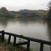 善福寺川の源流まで走ってきた。ランニングで2時間を超えると脚が痛くて走れない