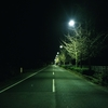たまには深夜の散歩。スマホカメラで撮る真夜中。