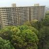地方移住か東京残留、だけではなくサードウェーブ(Nerimaという選択)