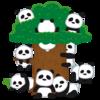 上野動物園で双子のパンダが誕生!いつから見れる?