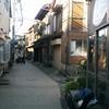 江ノ島大堤防でアイゴフェス!🔥🐧🐱 I LOVE AIG. 18年10月。