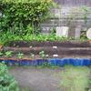 【家庭菜園番外編】壊れた畝のその後