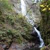 養父(やぶ)の天瀧と箕面(みのお)の滝