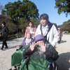 29年11月28日 菊花展に行きました