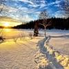 年末年始は寒波襲来・日常雑記