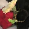 愛猫フーコーが突然死しました。