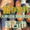 天神川水系小鴨川で無料の伐採木の配布が先着順で行われます。