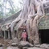 カンボジア旅行③まるでラピュタの世界!タ・プローム
