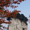 見附島と紅葉