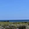 渚のサーフ物語。「太陽光を浴びながら波待ちからのパドリングにテイクオフ。アフターサーフが爽やかな海辺が贈るサーフィンの魅力」の巻。