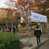 茶源郷まつり・2017年が開催されました!会場の様子をチラとご紹介【和束町・イベント】