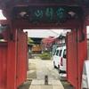 保険会社によってはババなのが日本の損保。でも日本の桜はどれも美しい。