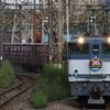 貨物列車撮影 9/30② JR貨物30周年記念HM付きEF65 2095、DD200-901付き配6794レ、8151レなど