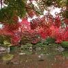山形市 紅葉に染まる秋のもみじ公園をご紹介!