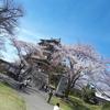 あっぱれ!高島城と桜