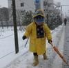 今日の東京は記録的な大雪で大混乱。