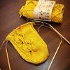 コロポックル ソックヤーンで靴下を編み始めました