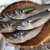 【レポート】おとなクラス「お魚さばき教室」