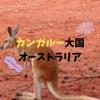 オーストラリアにカンガルーってどのくらいいるの?