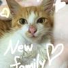 Ayatoにとうとう新しい家族が増えました♡それは・・・
