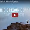 凛とした空気 アメリカオレゴン州の冬の海