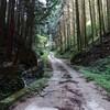 千早赤阪の林道足谷線を走る