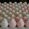 【六角堂の鳩みくじ&鳩絵馬】鳩いっぱいのお寺は恋愛成就のご利益も♪