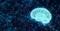 マルチタスクによる脳への負担を減らす方法。「○○を正す」のが意外と効果的