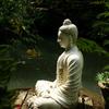 瞑想すると何が起こるのか?