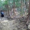 長谷山 日向コース