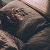 1分で出来る!睡眠の質を上げる簡単な方法
