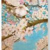 桜の絵が完成しました〜もうすぐ春ですね〜