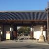 京都宿泊、東寺へ散歩