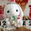 河津桜祭り2021ライブカメラ!バレンタイン恋人岬!記念写真