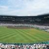 高校野球と「ウグイス譲」の謎