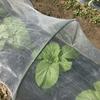 秋冬野菜の準備 −Part2ー