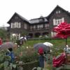 悪天候でも魅力的!旧古河庭園のバラを観に行こう!