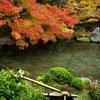 洛北・蓮華寺を訪ねて 3