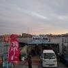 ハゼ釣り:江戸川放水路【時期外れのハゼ釣り。江戸川で待ち受けていた悲劇。】