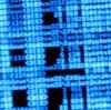 超文系人間がプログラミング学習始めます。