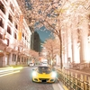 ✿Lotus Elise Sport 220 Ⅱ 無事1年経ちました!✿