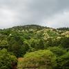 奈良県桜井市・三輪山
