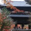 【京都左京区】日本3大門のひとつ。南禅寺の三門から秋の紅葉を楽しむ。石川五右衛門「絶景かな」で有名。