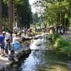 新潟県でオシャレに川辺バーベキューができるスポット4選!