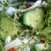 チャックの野菜(2)ピクルス