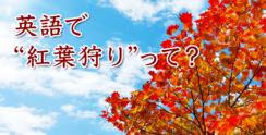 「紅葉狩り」を英語で話せるようになって、 外国人と秋を楽しもう!